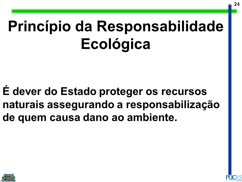 Princípio da Responsabilidade Ecológica