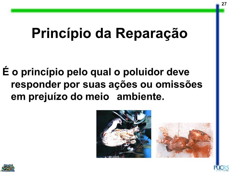 Princípio da Reparação