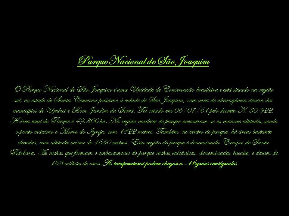 Parque Nacional de São Joaquim O Parque Nacional de São Joaquim é uma Unidade de Conservação brasileira e está situado na região sul, no estado de Santa Catarina próximo à cidade de São Joaquim, com aréa de abrangência dentro dos municípios de Urubici e Bom Jardim da Serra.