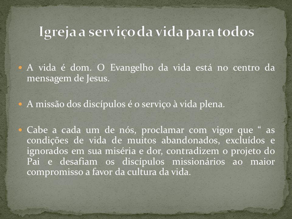 Igreja a serviço da vida para todos