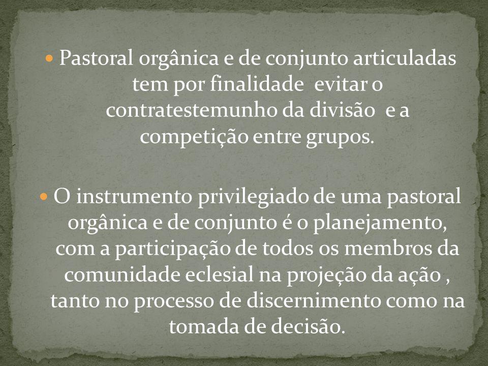 Pastoral orgânica e de conjunto articuladas tem por finalidade evitar o contratestemunho da divisão e a competição entre grupos.