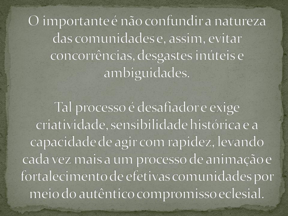 O importante é não confundir a natureza das comunidades e, assim, evitar concorrências, desgastes inúteis e ambiguidades.