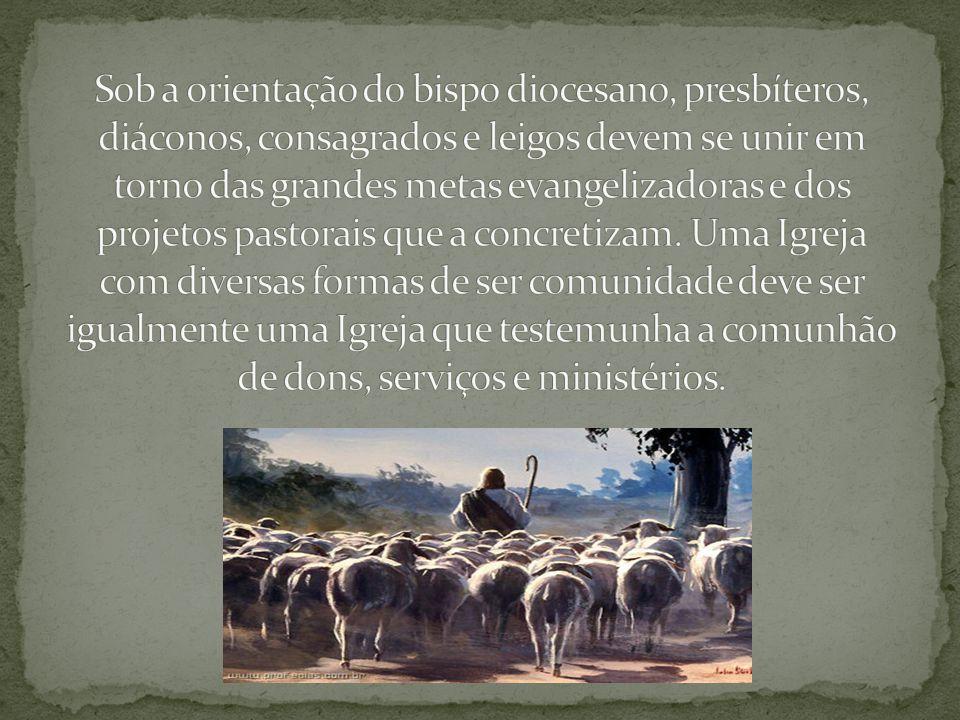 Sob a orientação do bispo diocesano, presbíteros, diáconos, consagrados e leigos devem se unir em torno das grandes metas evangelizadoras e dos projetos pastorais que a concretizam.