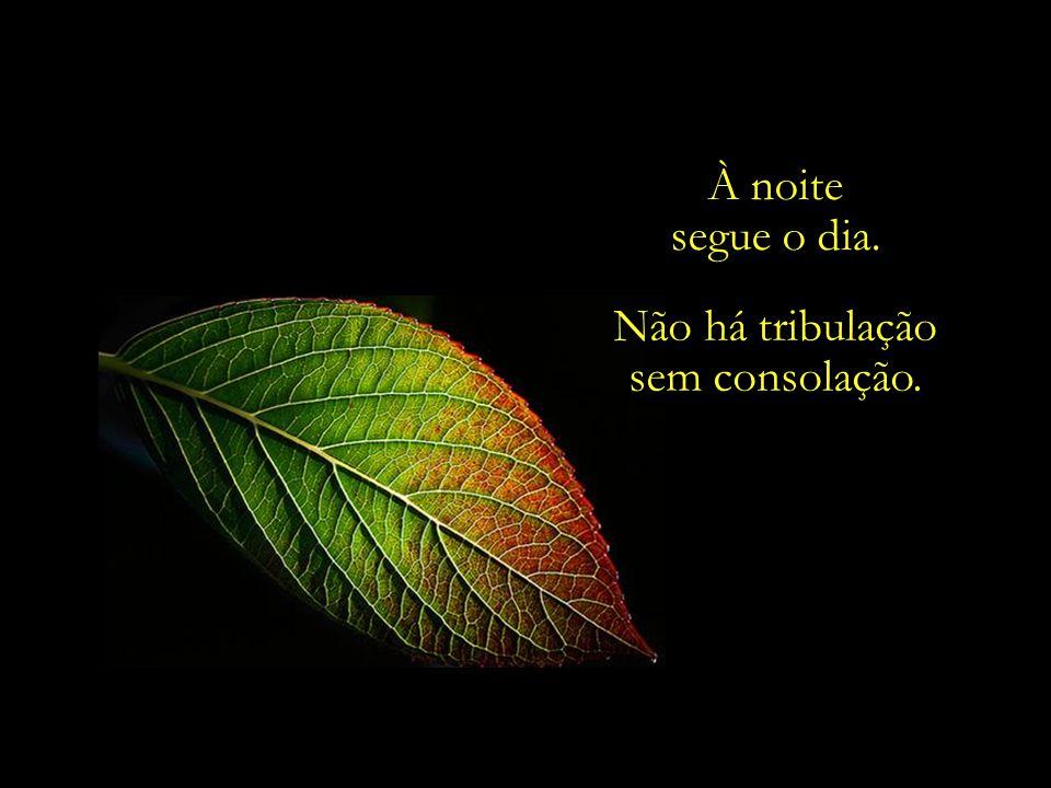 À noite segue o dia. Não há tribulação sem consolação.