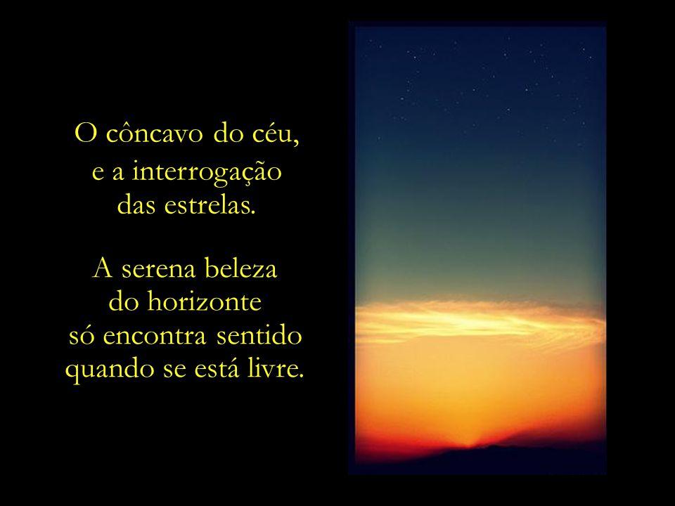 O côncavo do céu, e a interrogação. das estrelas. A serena beleza. do horizonte. só encontra sentido.