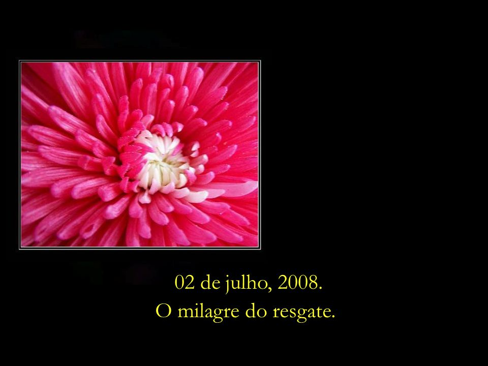 Um antigo ditado ensina: Quanto mais. intenso o inverno, mais bela a. primavera floresce ... 02 de julho, 2008.