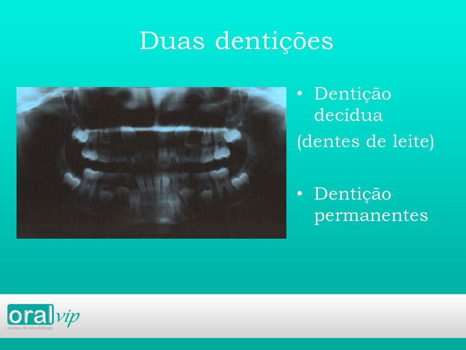 Duas dentições Dentição decídua (dentes de leite) Dentição permanentes