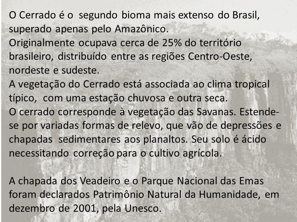 O Cerrado é o segundo bioma mais extenso do Brasil, superado apenas pelo Amazônico.