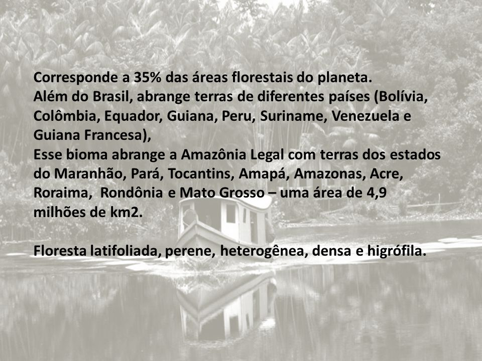 Corresponde a 35% das áreas florestais do planeta.