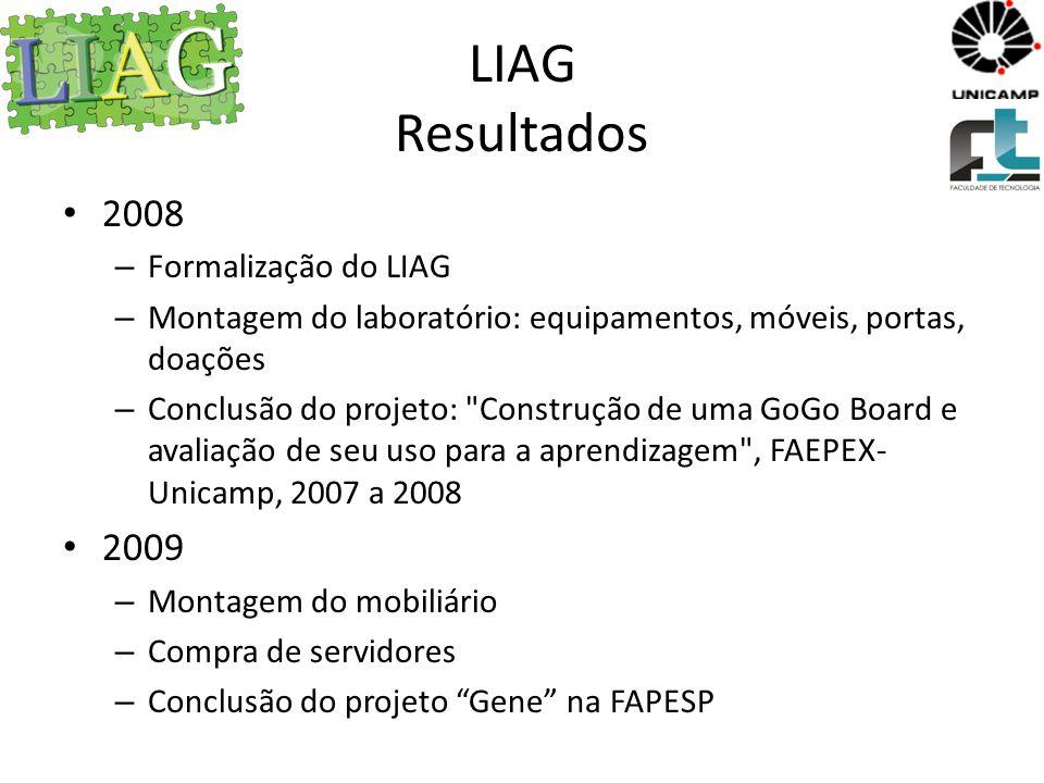 LIAG Resultados 2008 2009 Formalização do LIAG