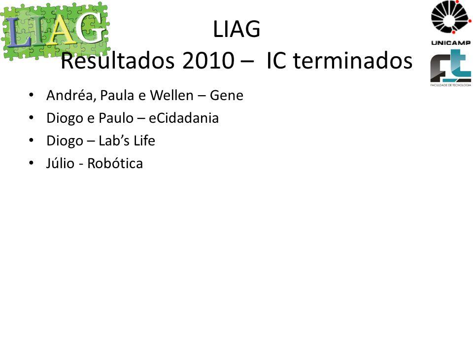 LIAG Resultados 2010 – IC terminados
