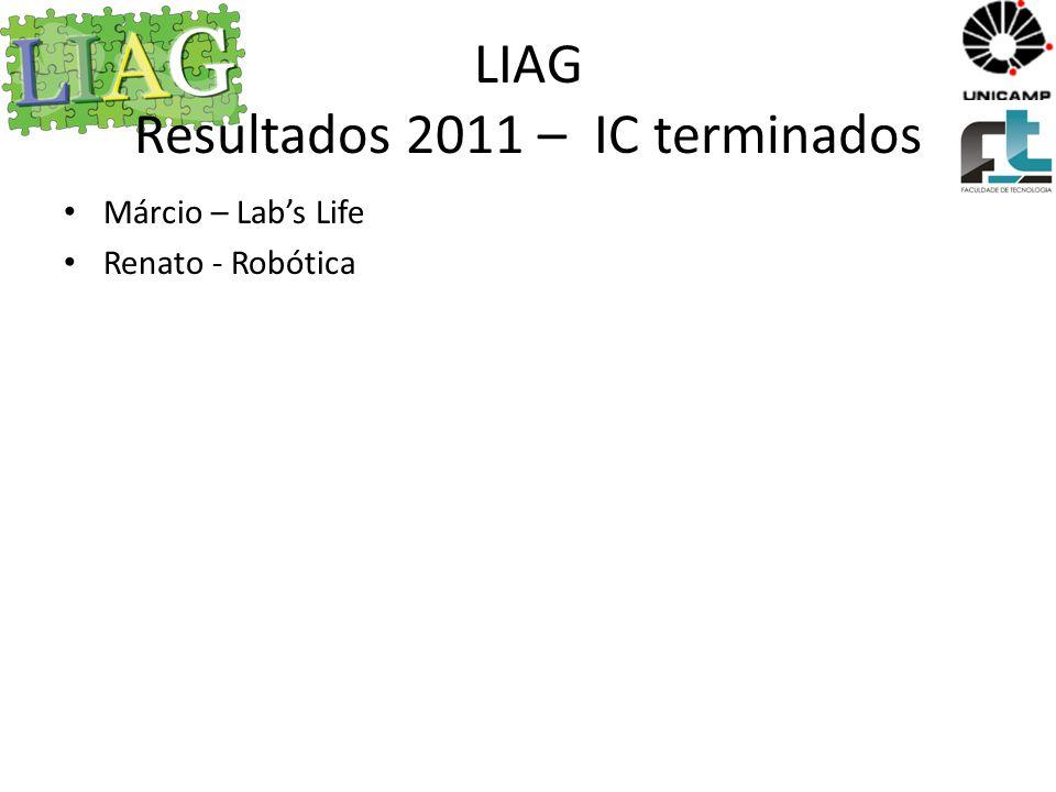 LIAG Resultados 2011 – IC terminados