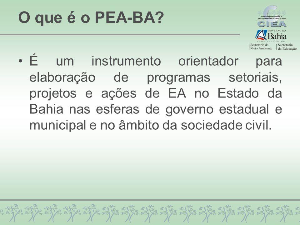 O que é o PEA-BA