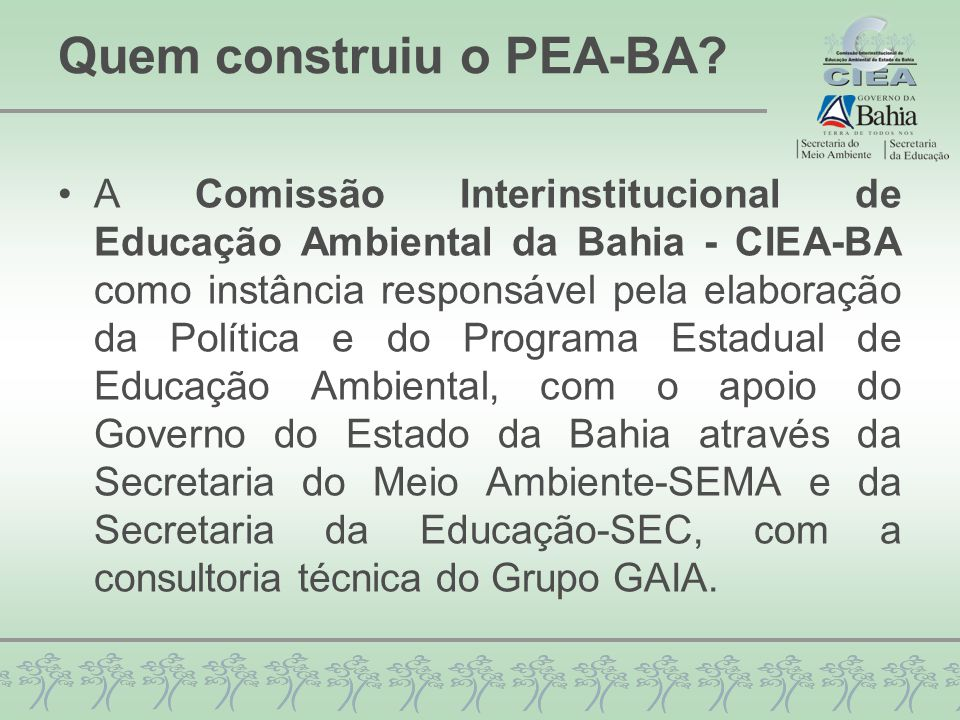 Quem construiu o PEA-BA