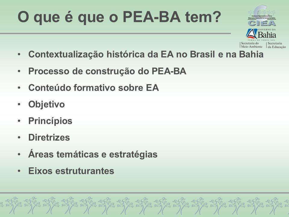 O que é que o PEA-BA tem Contextualização histórica da EA no Brasil e na Bahia. Processo de construção do PEA-BA.