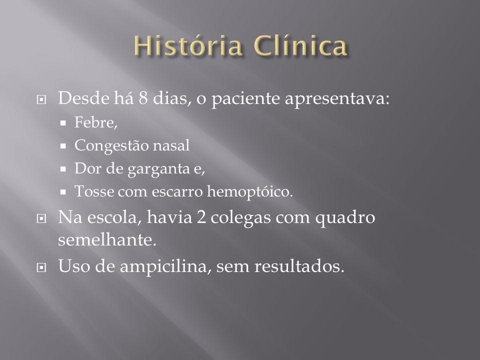 História Clínica Desde há 8 dias, o paciente apresentava: