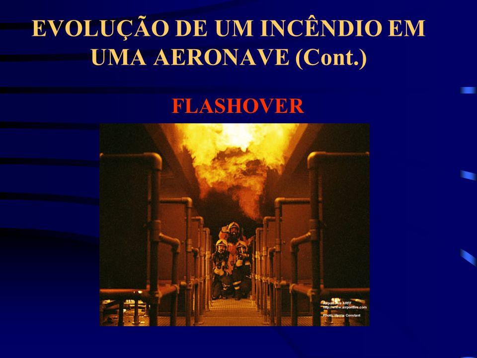 EVOLUÇÃO DE UM INCÊNDIO EM UMA AERONAVE (Cont.)