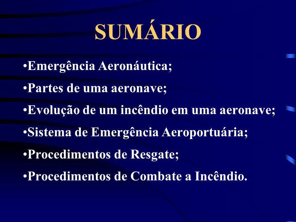 SUMÁRIO Emergência Aeronáutica; Partes de uma aeronave;