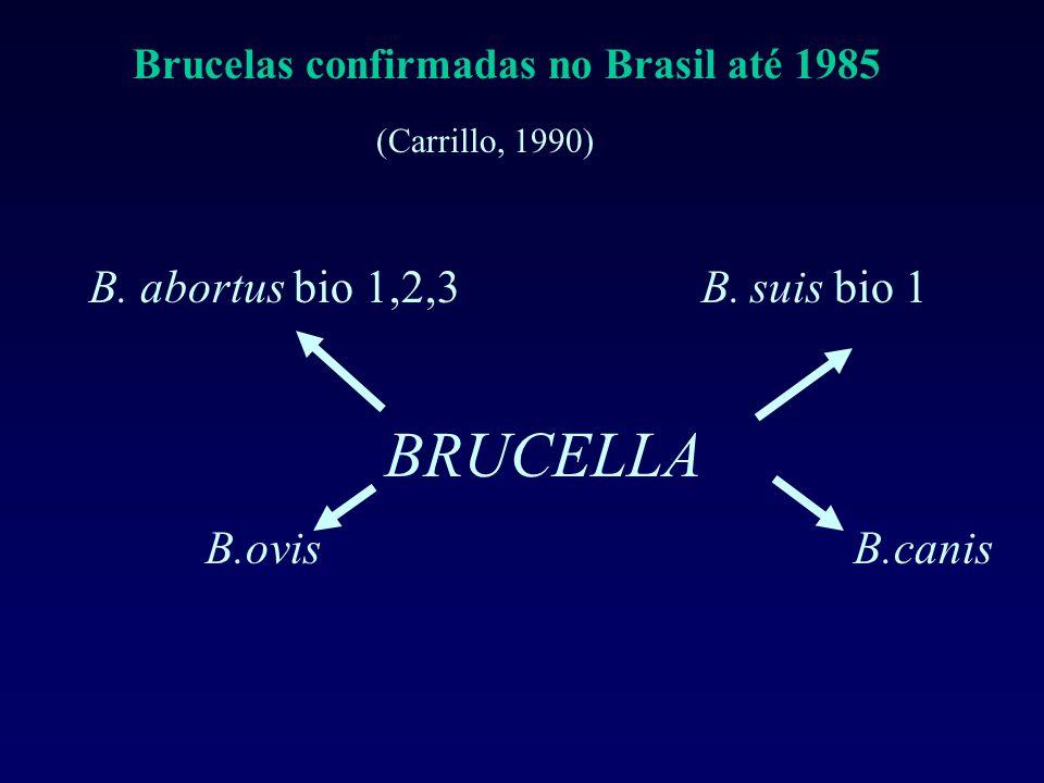 B. abortus bio 1,2,3 B. suis bio 1 B.ovis B.canis