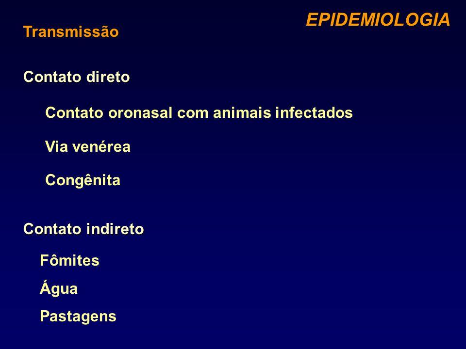 EPIDEMIOLOGIA Transmissão Contato direto