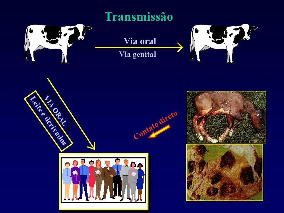 Transmissão Via oral Via genital Leite e derivados Contato direto