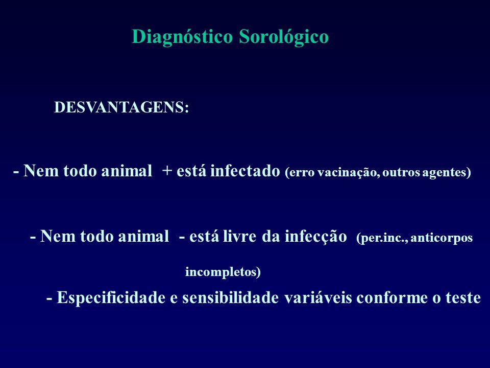 - Nem todo animal - está livre da infecção (per.inc., anticorpos