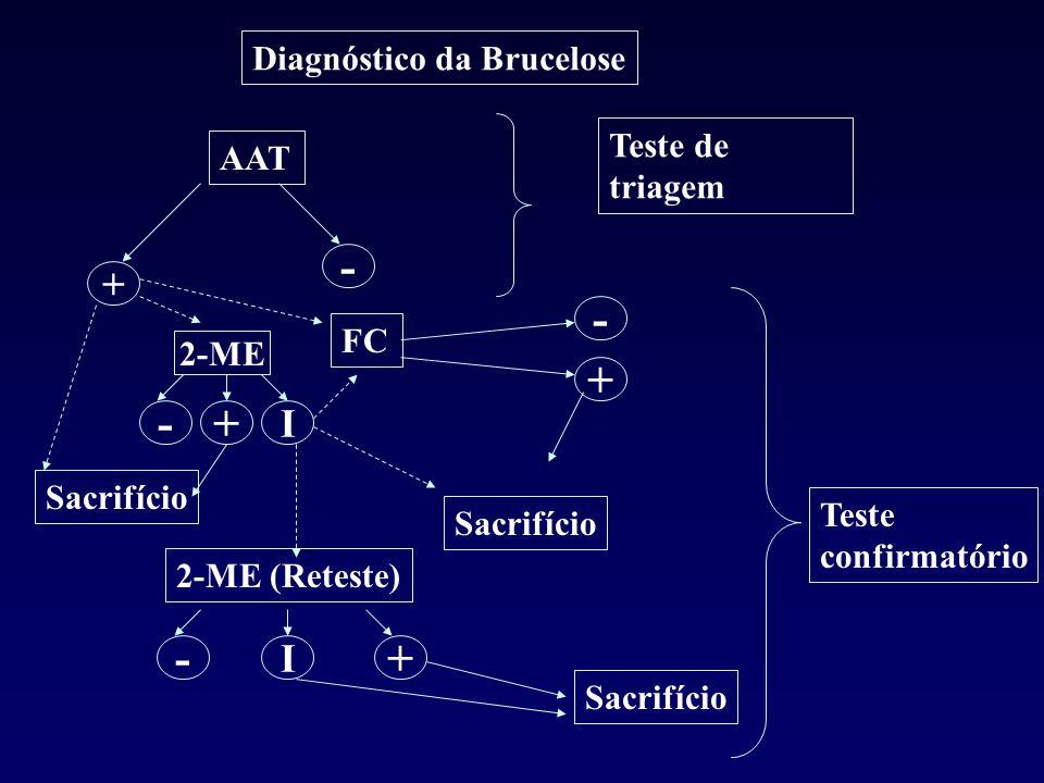- - + - + - + + I I Diagnóstico da Brucelose Teste de triagem AAT FC