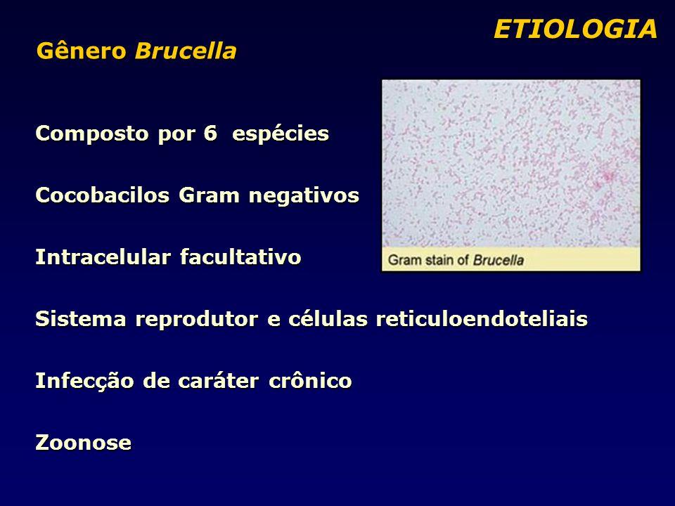ETIOLOGIA Gênero Brucella Composto por 6 espécies