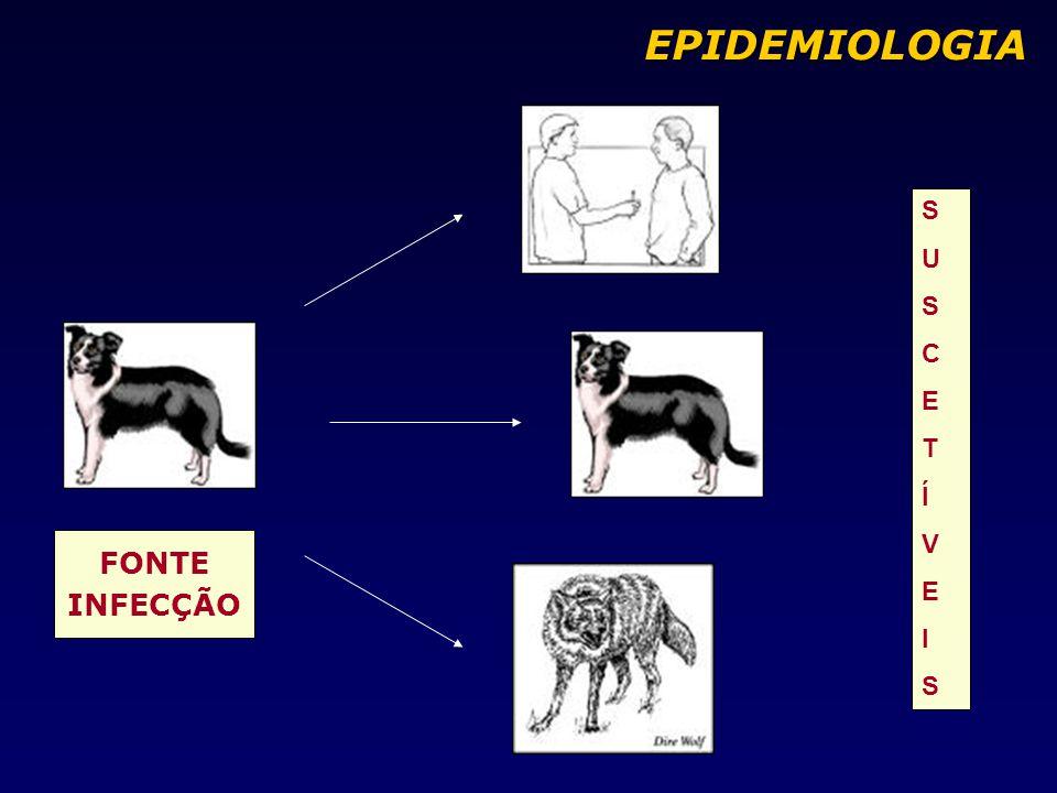 EPIDEMIOLOGIA S U C E T Í V I FONTE INFECÇÃO