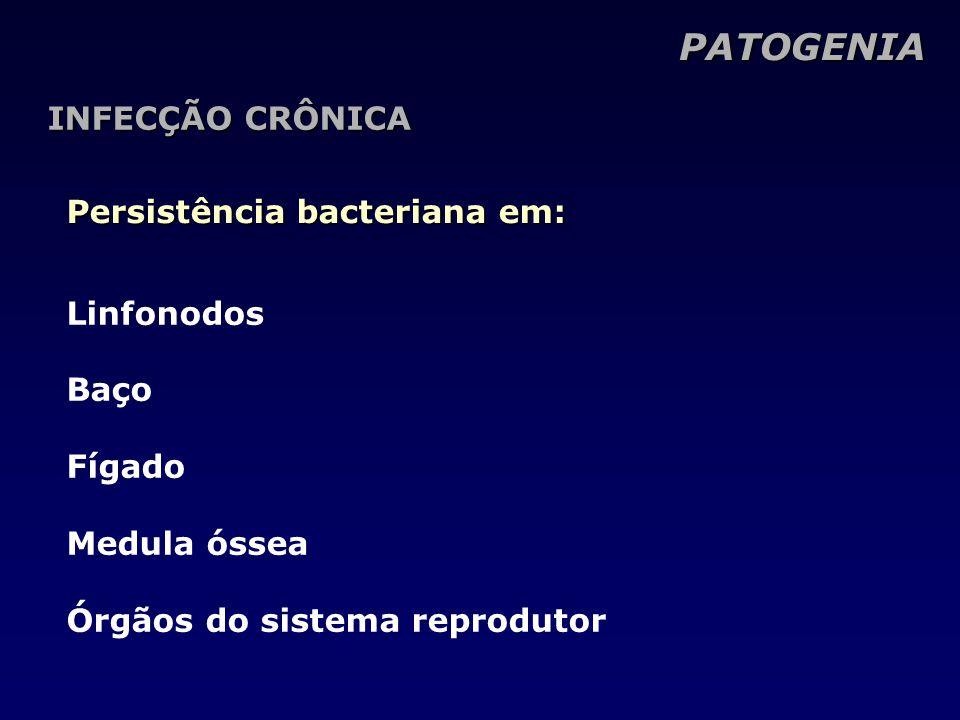 PATOGENIA INFECÇÃO CRÔNICA Persistência bacteriana em: Linfonodos Baço