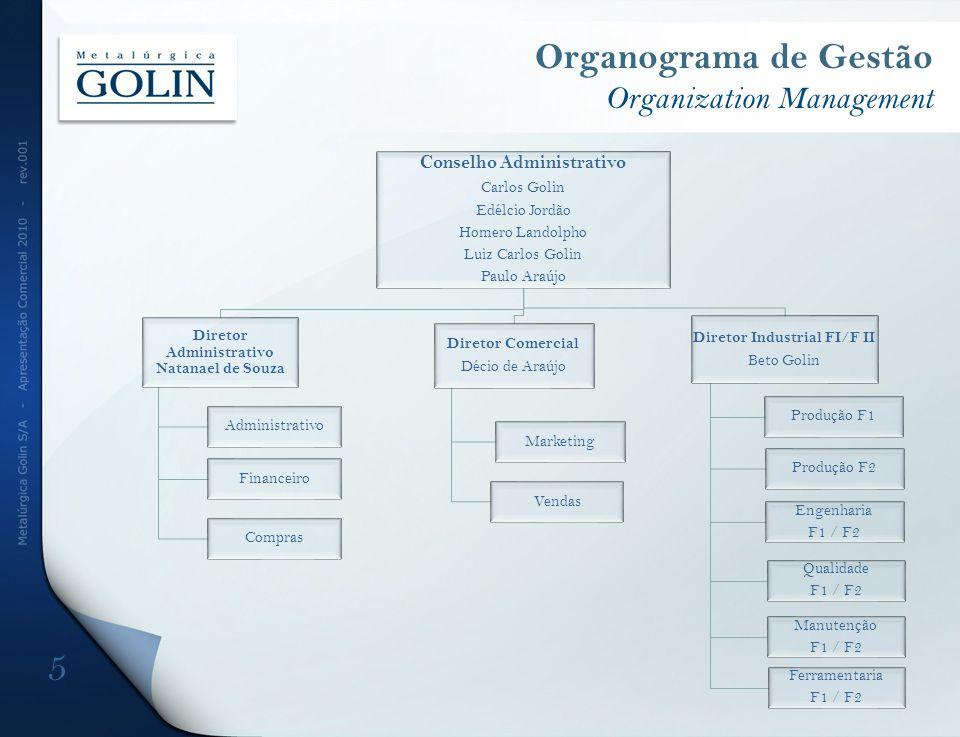 Organograma de Gestão Organization Management
