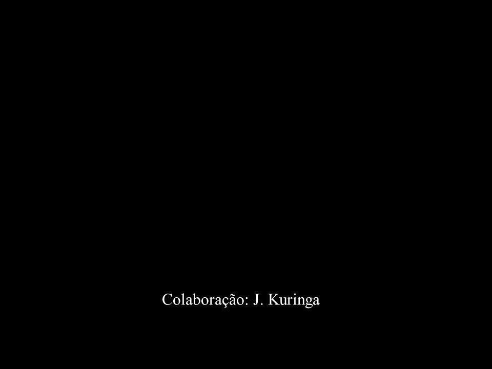 Colaboração: J. Kuringa