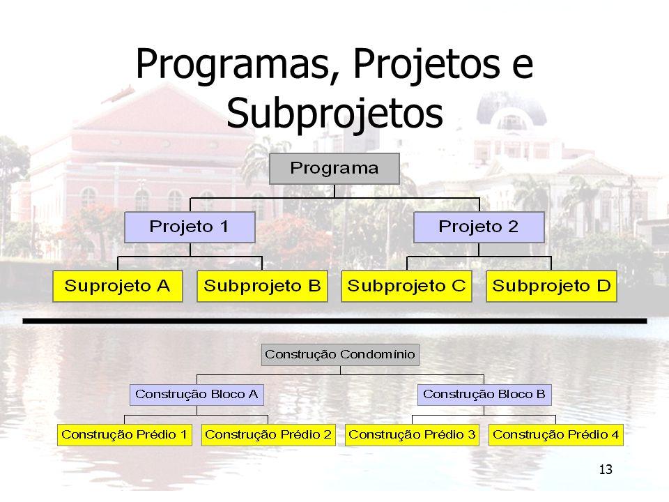 Programas, Projetos e Subprojetos