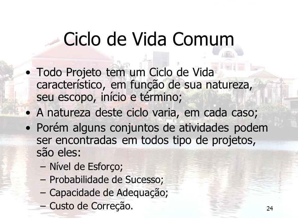 Ciclo de Vida Comum Todo Projeto tem um Ciclo de Vida característico, em função de sua natureza, seu escopo, início e término;
