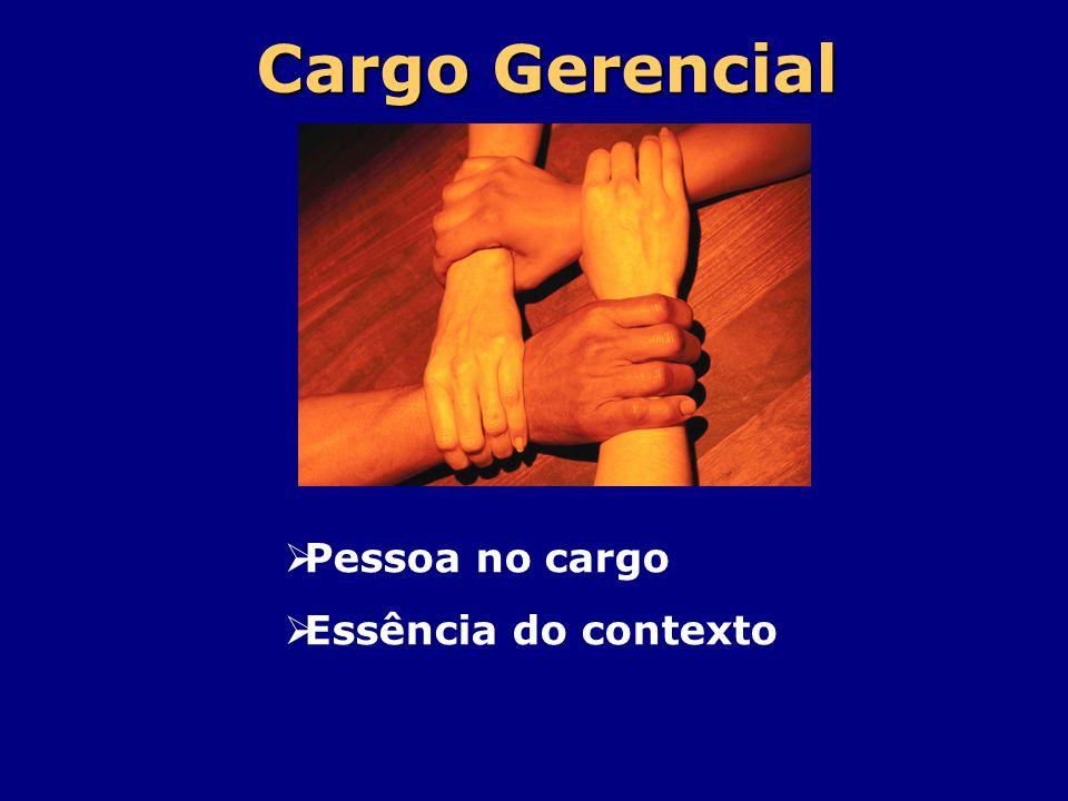 Cargo Gerencial Pessoa no cargo Essência do contexto