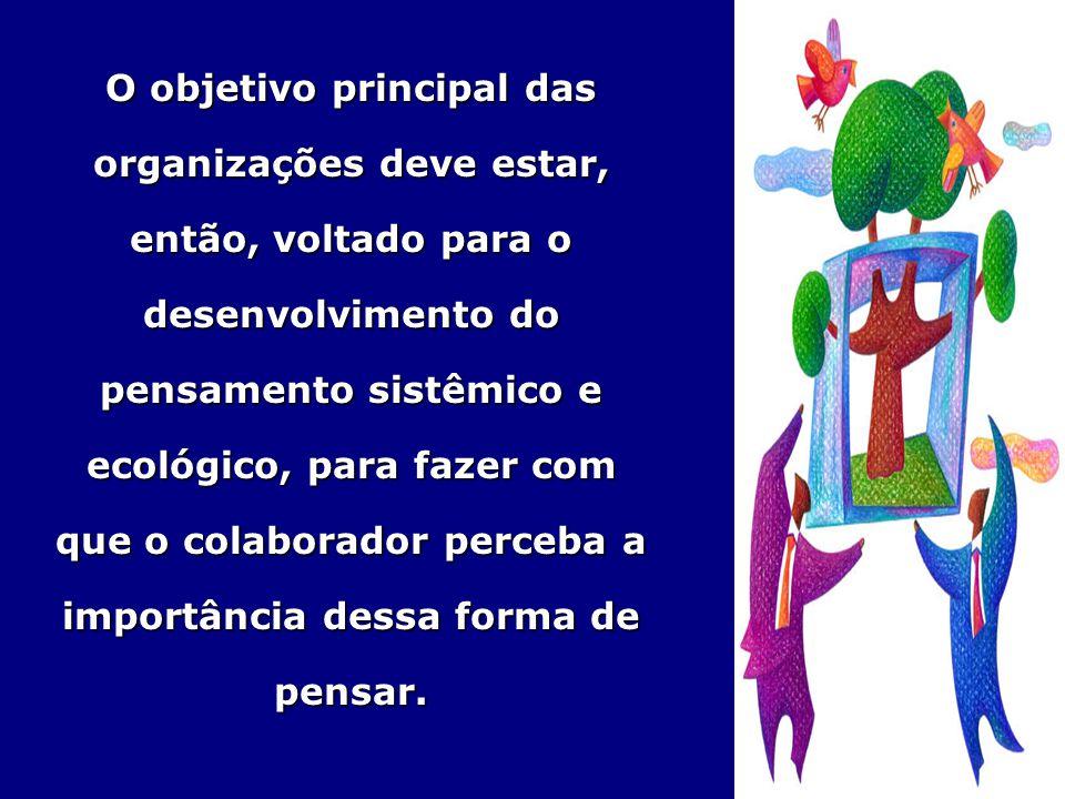 O objetivo principal das organizações deve estar, então, voltado para o desenvolvimento do pensamento sistêmico e ecológico, para fazer com que o colaborador perceba a importância dessa forma de pensar.
