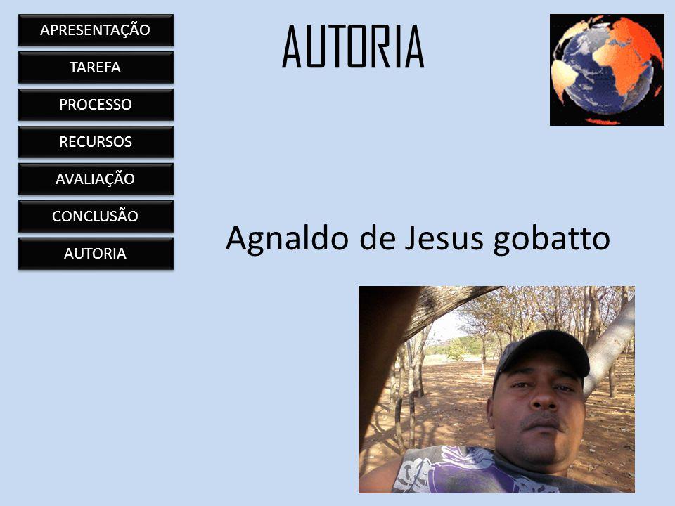 Agnaldo de Jesus gobatto