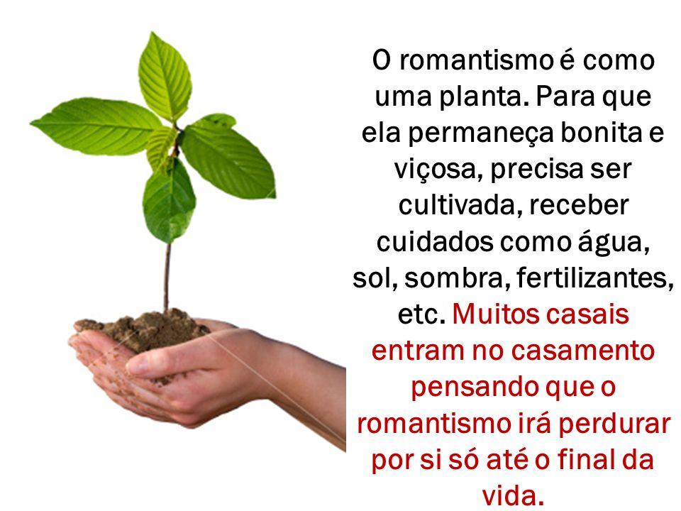 O romantismo é como uma planta