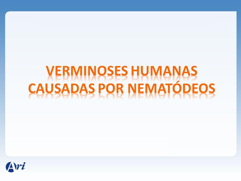 Verminoses humanas causadas por nematódeos