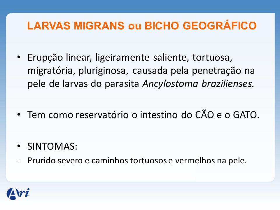 LARVAS MIGRANS ou BICHO GEOGRÁFICO