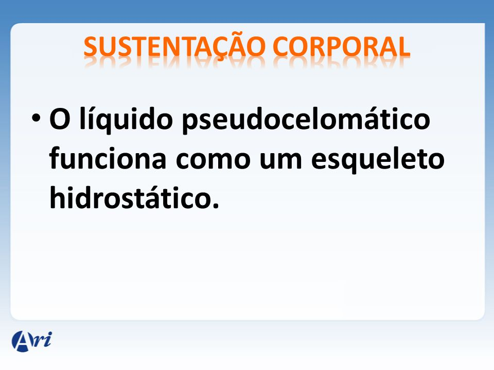 O líquido pseudocelomático funciona como um esqueleto hidrostático.
