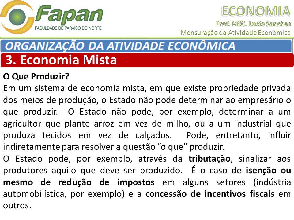3. Economia Mista O Que Produzir