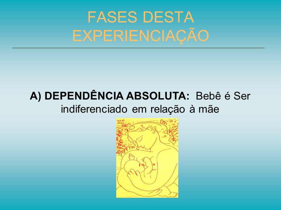 FASES DESTA EXPERIENCIAÇÃO