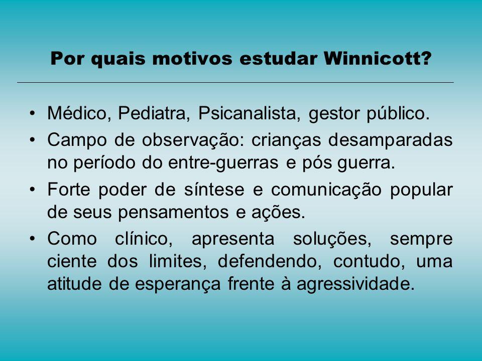 Por quais motivos estudar Winnicott