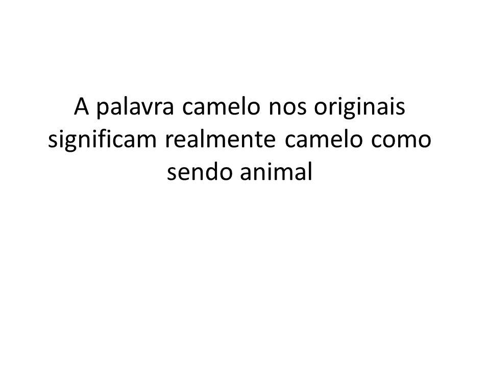 A palavra camelo nos originais significam realmente camelo como sendo animal