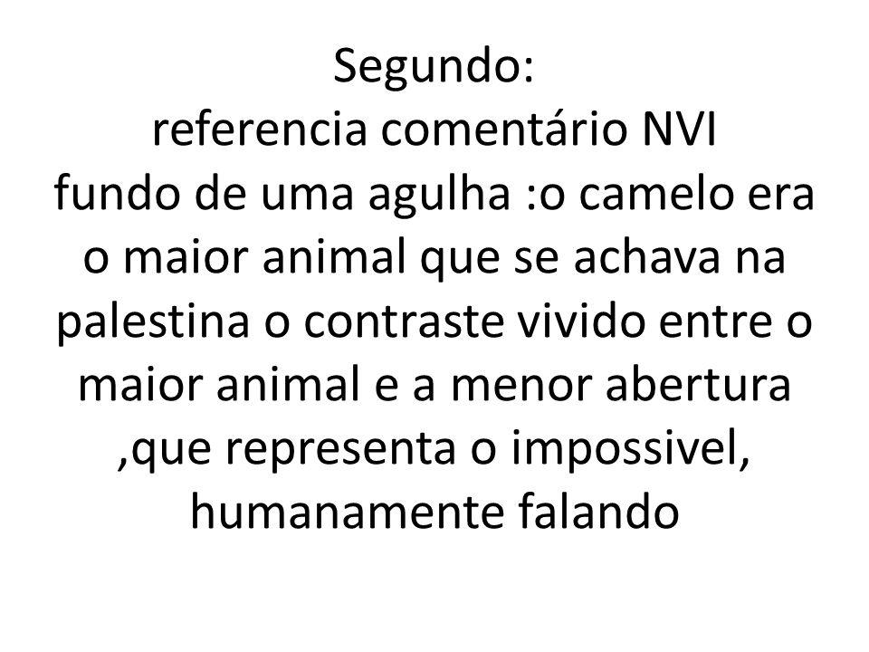 Segundo: referencia comentário NVI fundo de uma agulha :o camelo era o maior animal que se achava na palestina o contraste vivido entre o maior animal e a menor abertura ,que representa o impossivel, humanamente falando