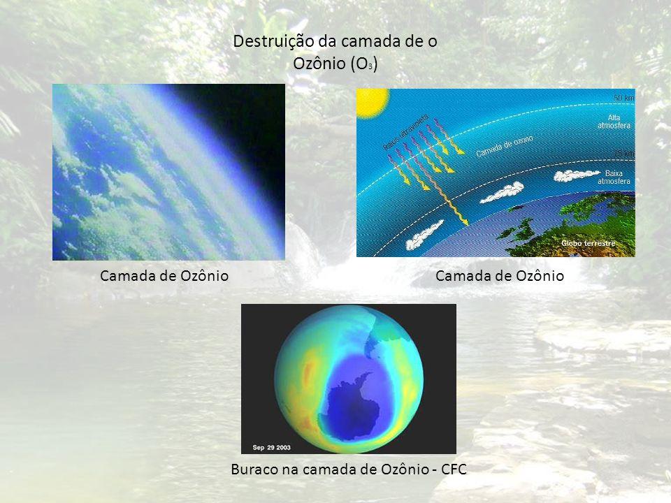 Destruição da camada de o Ozônio (O3)