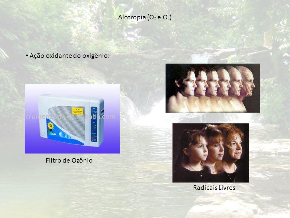 Alotropia (O2 e O3) Ação oxidante do oxigênio: Filtro de Ozônio Radicais Livres