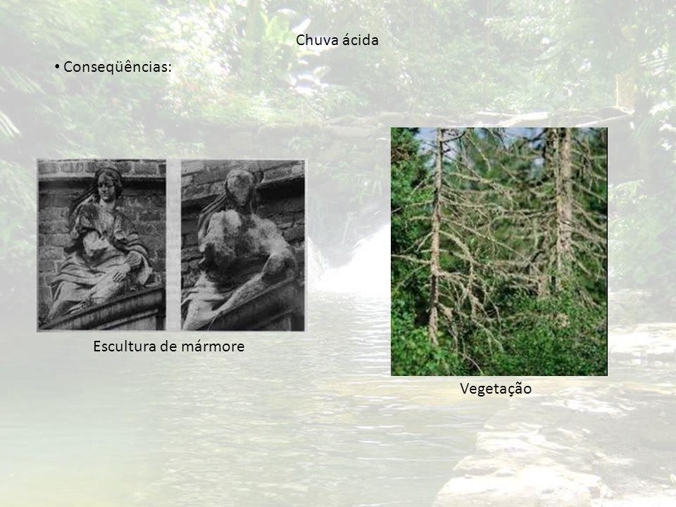 Chuva ácida Conseqüências: Escultura de mármore Vegetação
