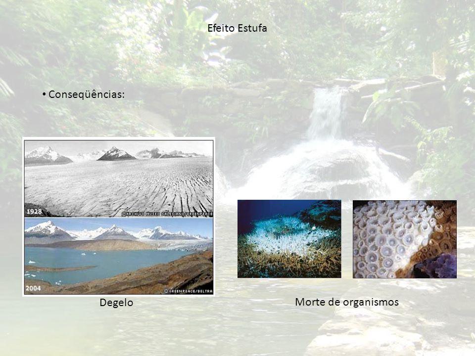 Efeito Estufa Conseqüências: Degelo Morte de organismos